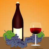Red wine, bottle and grape Stock Photography