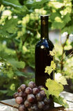 Red wine bottle with grape Stock Images