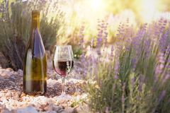 Wine over lavender field. Red wine bottle and wine glass on the ground. Bottle of wine against lavender landscape. Sunset over a summer lavender field in Stock Photography