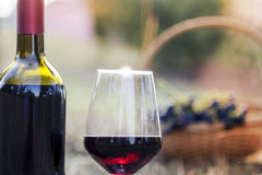 Red wine bottle and wine glass Royalty Free Stock Images