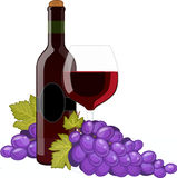 Red wine bottle and wineglass. Decorated with grapes isolated vector illustration Stock Photo