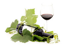 Red wine bottle wrapped in grape vine and glass Royalty Free Stock Images