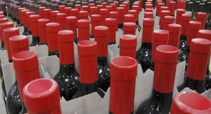 Red wine bottles. On display in a big superstore Royalty Free Stock Photos