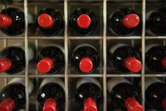 Red wine bottles in a cellar Royalty Free Stock Image