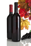 Red wine bottles, grapes and fall leaves. Two different bottles of red wine without labels, grapes and fall leaves isolated on white Stock Photography