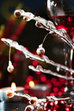 Red wine and branch with ice Royalty Free Stock Images