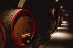Red wine cellar. In tuscany Royalty Free Stock Photos