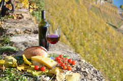 Red wine, cheese, bread and cherry tomatoes Royalty Free Stock Photography