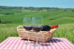 Red wine on the chequered cloth Royalty Free Stock Photos