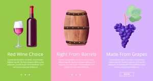 Red Wine Choice Right from Barrels Made from Grape Royalty Free Stock Photos