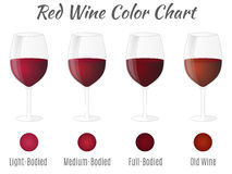 Red wine color chart. Hand drawn wine glasses. Royalty Free Stock Photo