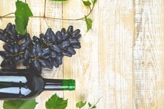 Red wine concept with bottle, glass and grapes royalty free stock images