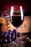 Red wine with fresh blue grapes Stock Images