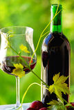 Red wine and fruits. royalty free stock photos