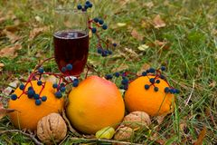 Red wine among a fruits Royalty Free Stock Photography