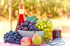 Red wine and fruits Stock Photography