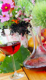 Red wine in garden Royalty Free Stock Photography