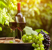 Red wine on garden terrace Stock Images
