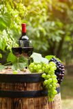 Red wine on garden terrace Stock Photo