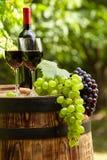 red wine on garden terrace Stock Photo