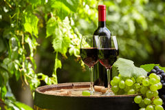 Red wine on garden terrace Stock Photography