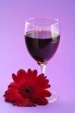 Red wine and gerbera Stock Photo