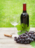 Red wine glass and bottle with bunch of grapes Stock Photography