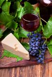 Red wine in a glass, a bunch of blue Isabella grapes and a piece of Maasdam cheese. On a wooden board royalty free stock photo