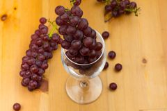 Red wine glass with fresh grapes around it on a wooden table.in it and royalty free stock photo