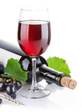Red wine in glass with grapes. On white background Royalty Free Stock Photos