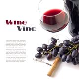 Red wine in the glass with grapes isolated on white background. Royalty Free Stock Photo