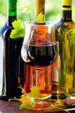 Red wine glass and grapevine leaves Royalty Free Stock Photography