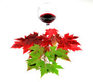 Red wine, glass and maple leafs Royalty Free Stock Photo