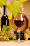 Red wine glass (shallow DOF) Stock Images