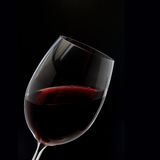Red Wine Glass silhouette on Black Stock Image