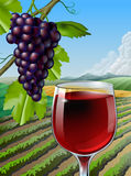Red Wine. Glass of red wine and some grapes over a rural landscape. Vector illustration Royalty Free Stock Photo