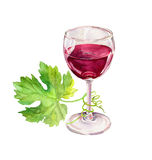 Red wine glass, vine leaves, scroll. Watercolor Stock Photography