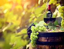 Red wine and glass on wodden barrel. Stock Image