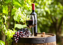 Red wine and glass on wodden barrel. Stock Photography