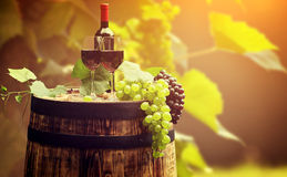 Red wine and glass on wodden barrel. Royalty Free Stock Photo