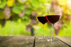 Red wine glasses served on wooden planks, vineyard on background Royalty Free Stock Image