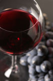 Red wine and grape Royalty Free Stock Photo