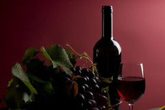 Red wine and grape close-up Royalty Free Stock Images