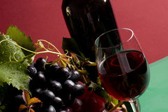 Red wine and grape close-up Royalty Free Stock Photos