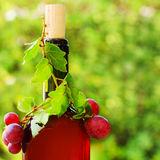 Red wine with grape stock photos