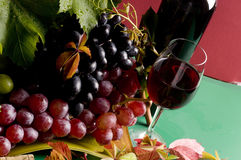 Red wine and grape food Stock Photos