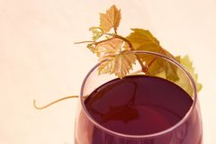 Red Wine with Grape Leaves Royalty Free Stock Photos