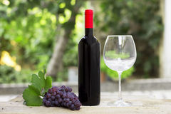 Red wine and grape Royalty Free Stock Images