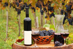 Red wine and grape on wooden barrel Royalty Free Stock Photo