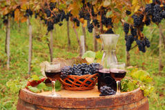 Red wine and grape on wooden barrel in vineyard Royalty Free Stock Photos